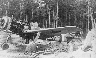 cntreffeat_mt_fw190d-91_brown4-bw